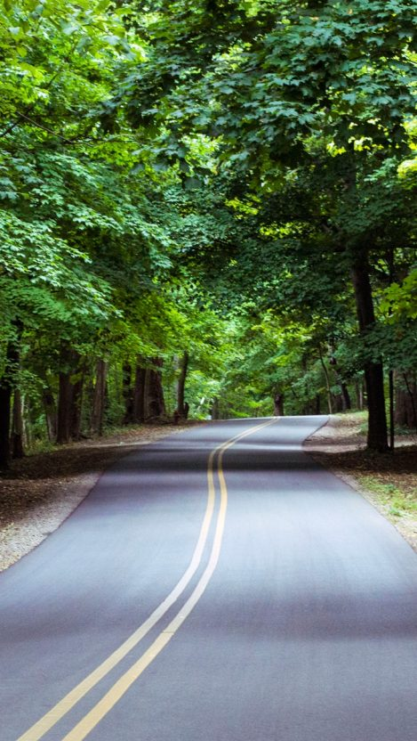 Nature Forest Road iPhone Wallpaper iphoneswallpapers com