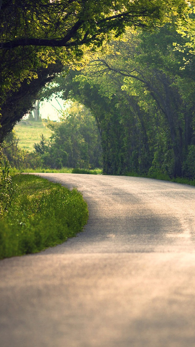 Road of the Nature iPhone Wallpaper iphoneswallpapers com