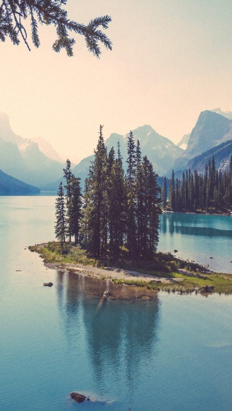 Center Trees of Lake iPhone Wallpaper iphoneswallpapers com