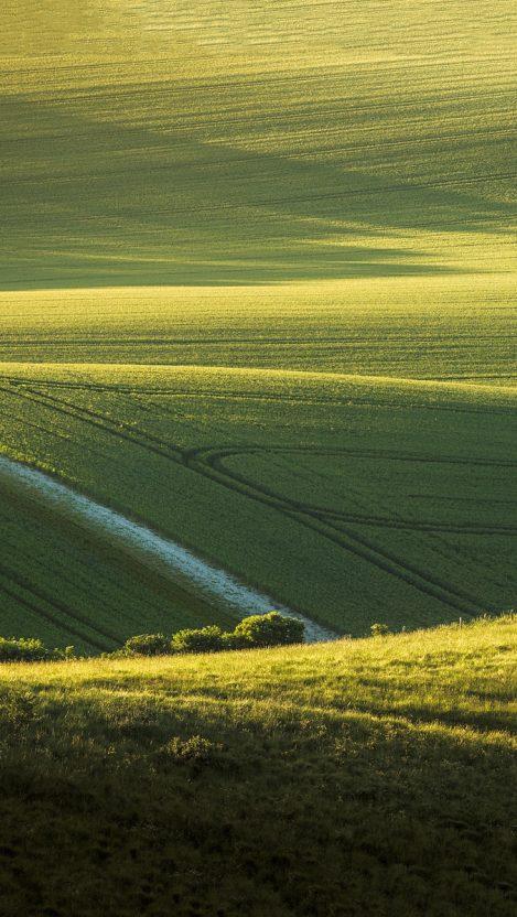 Meadow Green Fields iPhone Wallpaper iphoneswallpapers com