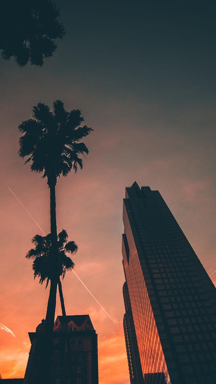 Miami Sunset Sky Buildings Iphone Wallpaper Iphone