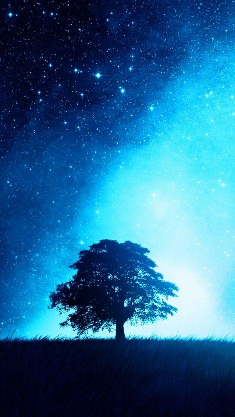 Night Sky Tree IPhone Wallpaper