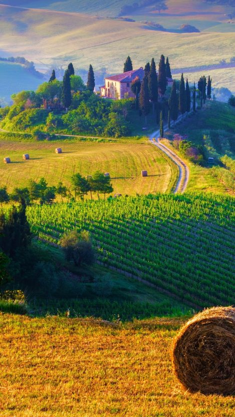 Tuscany Italy Landscape iPhone Wallpaper iphoneswallpapers com