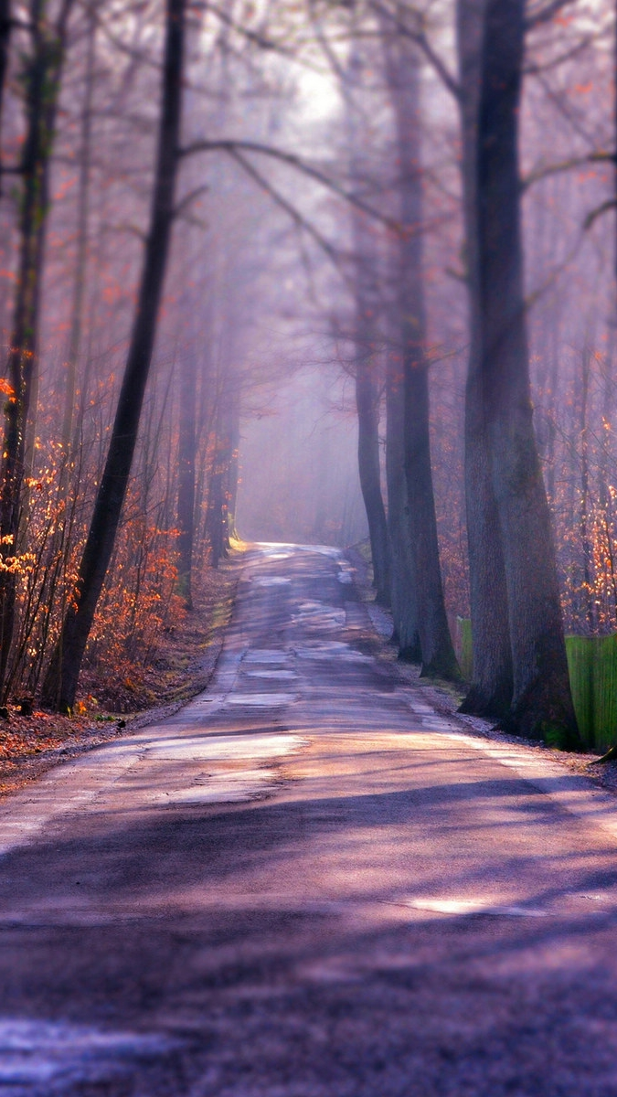 Winter-Autumn-Road-iPhone-Wallpaper - iPhone Wallpapers