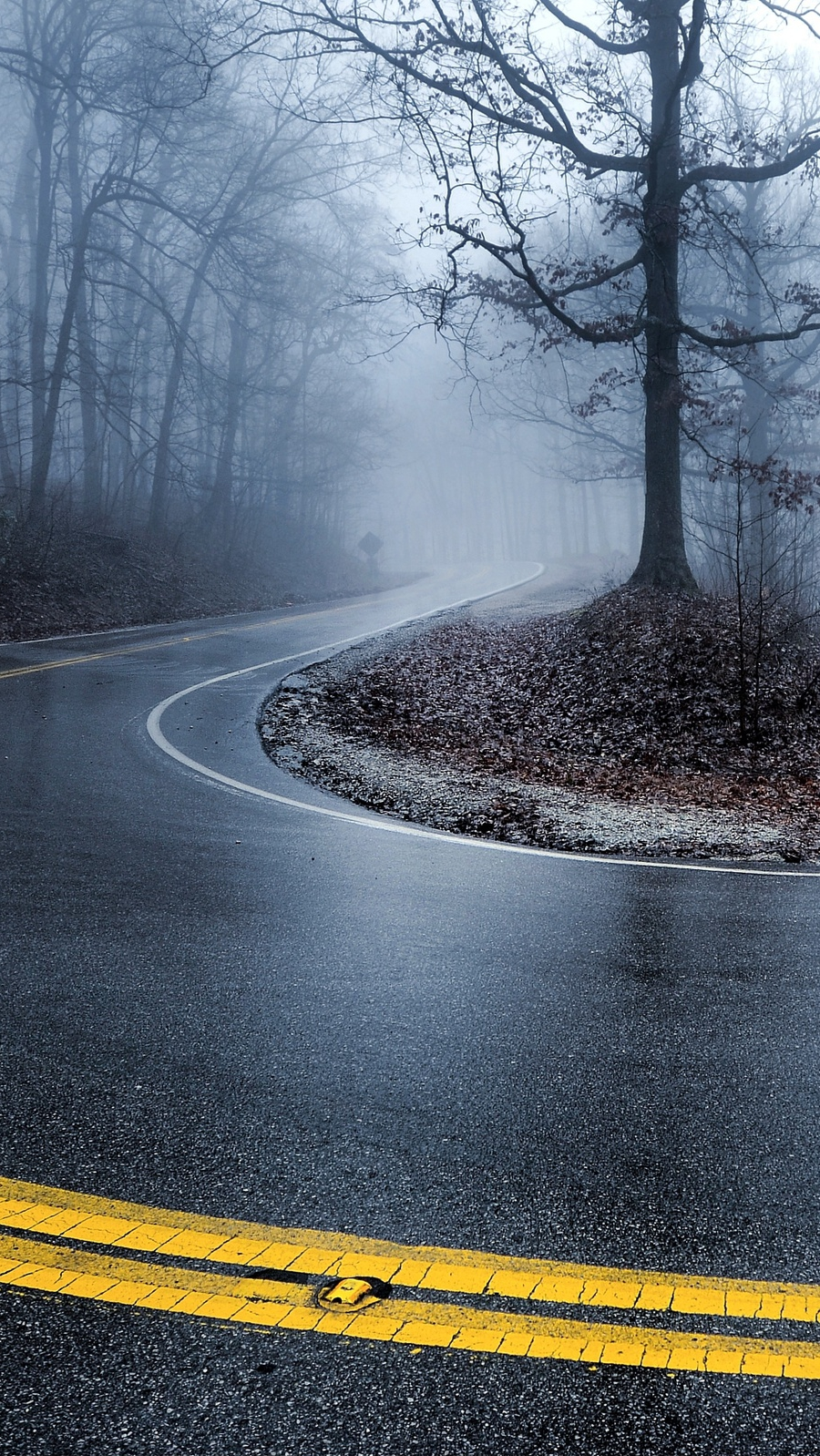 Road Winter Trees Fog iPhone Wallpaper iphoneswallpapers com