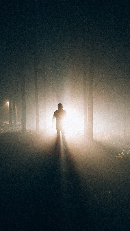 Stranger in The Dark Forest Wallpaper iPhone Wallpaper iphoneswallpapers com