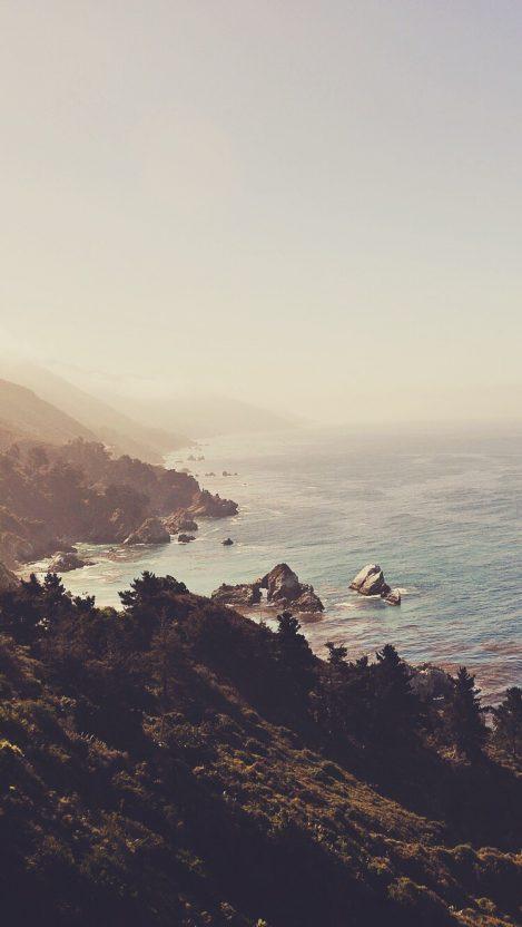 Beach Forest iPhone Wallpaper iphoneswallpapers com