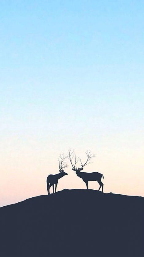 Sheep 9 Animals Minimalistic Wallpapers For Iphone: Carbon-Fiber-Minimal-Art-iPhone-Wallpaper