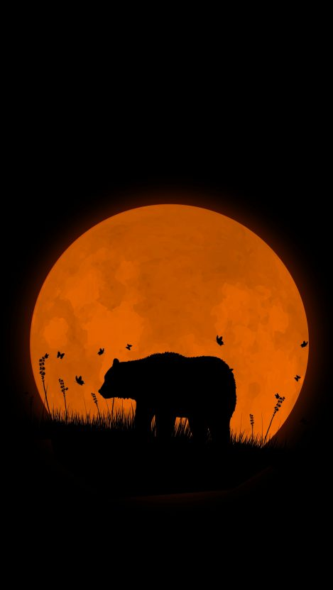 Grizzly Bear Super Moon IPhone Wallpaper