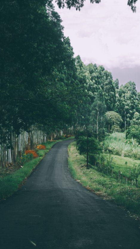 Road Beautiful Nature iPhone Wallpaper iphoneswallpapers com