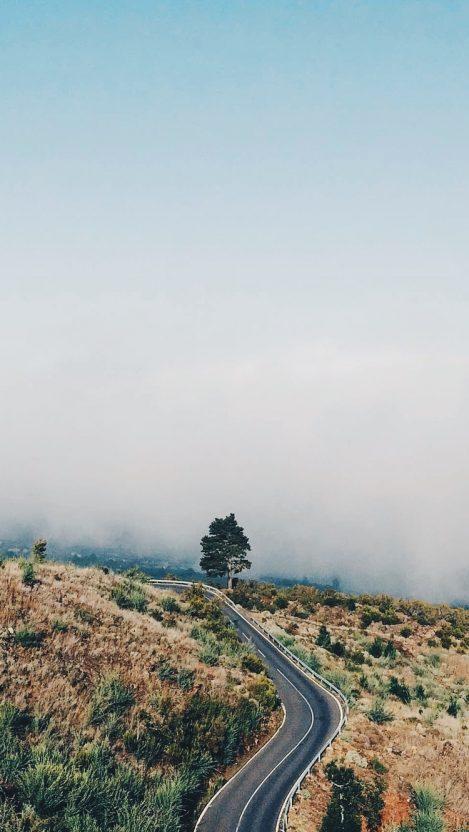 Road Mist Nature iPhone Wallpaper iphoneswallpapers com