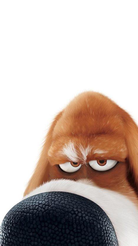 Secret Life Of Pets Dog IPhone Wallpaper