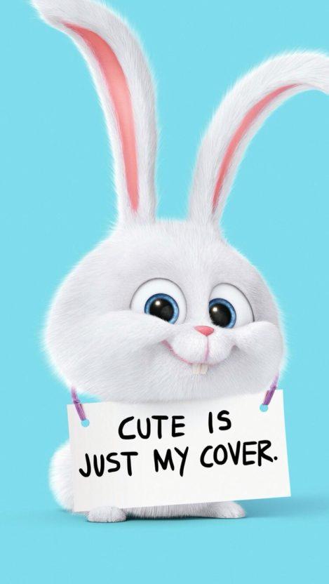 Snowball Cute Bunny Secret Life of Pets iPhone Wallpaper iphoneswallpapers com