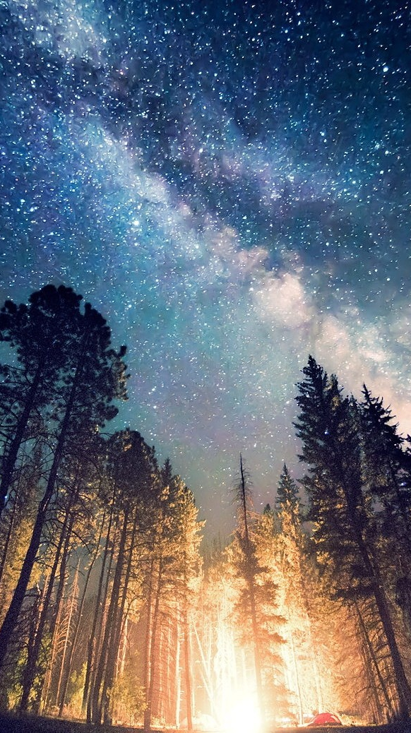Camp Fire Sky View in Night iPhone Wallpaper iphoneswallpapers com