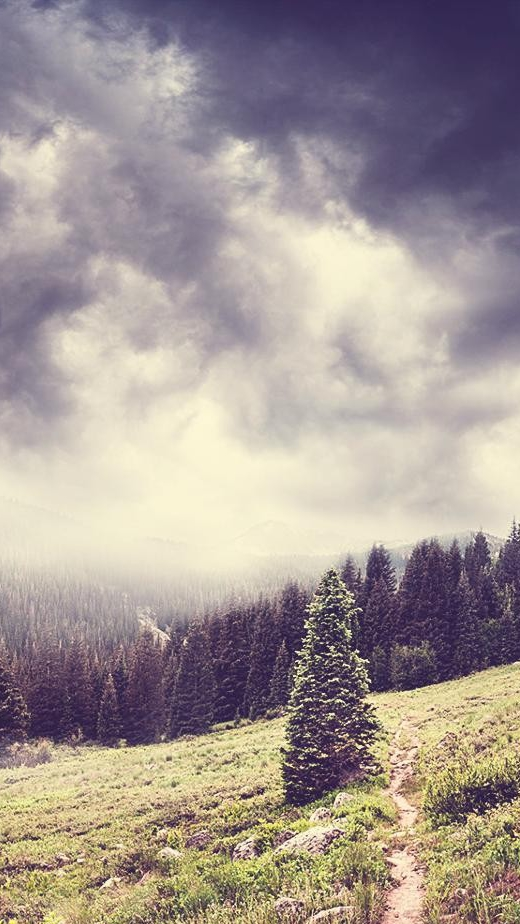 Dark Clouds Over Forest Nature Mountains Iphone Wallpaper