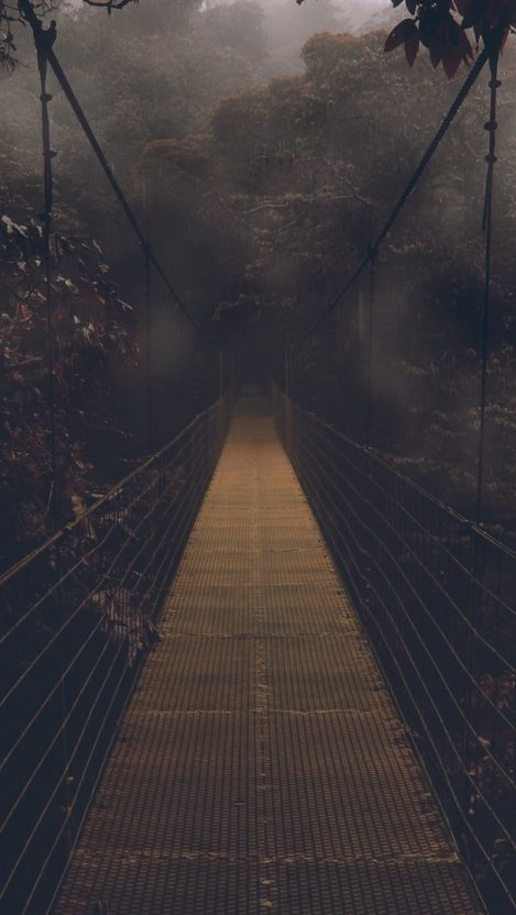 Dark Forest Bridge Wallpaper iPhone Wallpaper iphoneswallpapers com