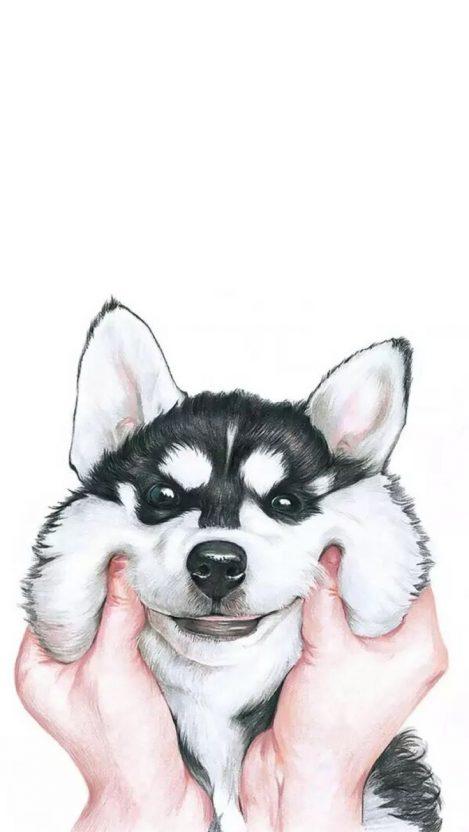Cute Husky Dog IPhone Wallpaper