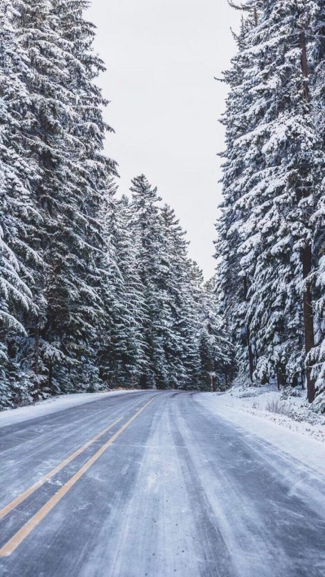 Snow Road Forest Trees IPhone Wallpaper