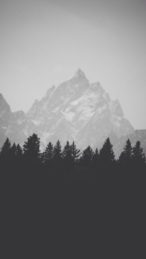 Black and White Mist Forest Mountain iPhone Wallpaper iphoneswallpapers com