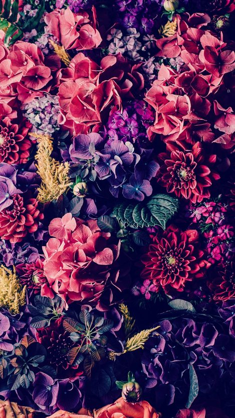 Floral iPhone Wallpaper iphoneswallpapers com