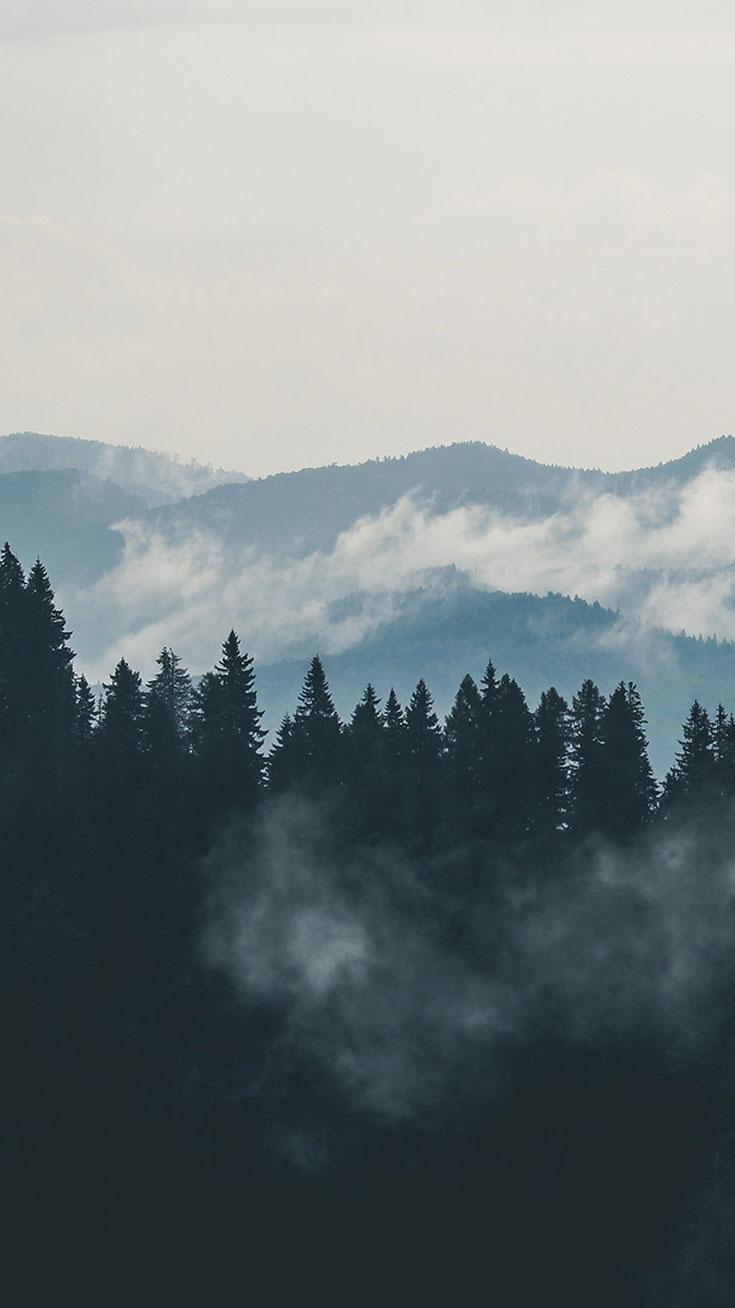 Fog mountain view iPhone Wallpaper iphoneswallpapers com