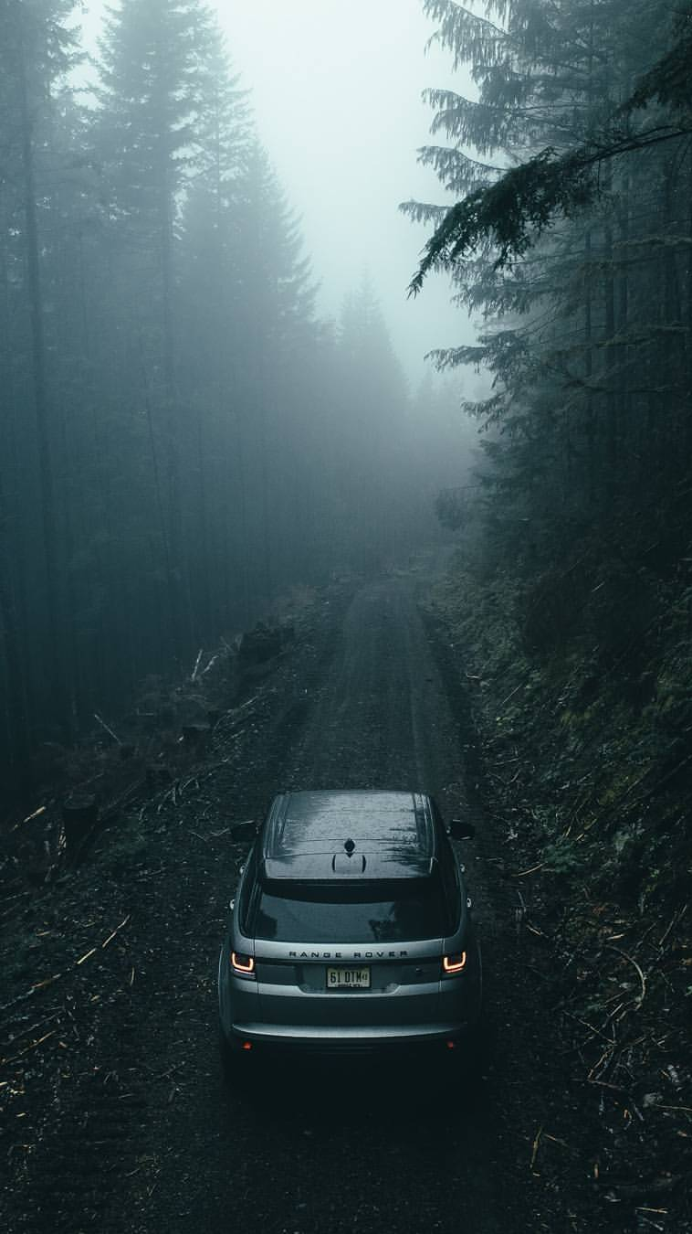 Range Rover Sport In Forest Iphone Wallpaper Iphone