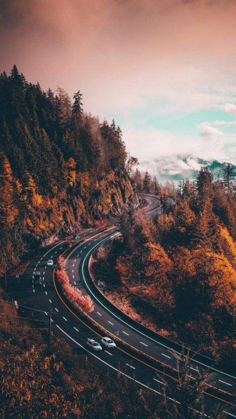 Nature Highway Road iPhone Wallpaper iphoneswallpapers com