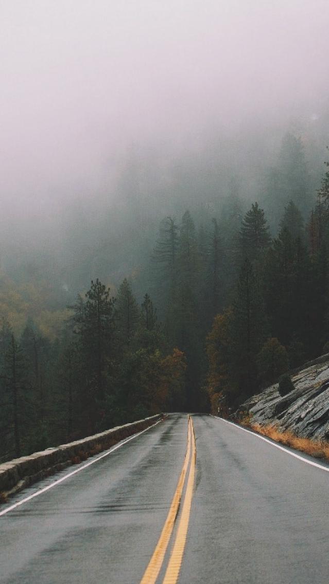 Rain Mist Fog Forest Road iPhone Wallpaper iphoneswallpapers com