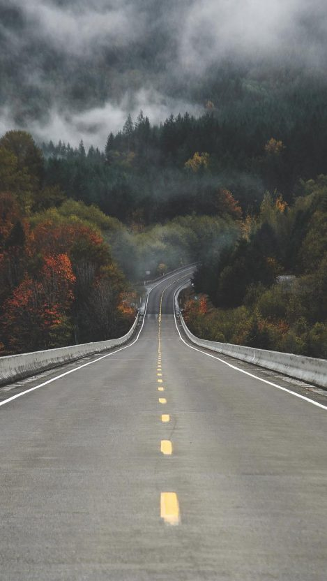 Road to Forest Mist Fog Beautiful Weather iPhone Wallpaper iphoneswallpapers com