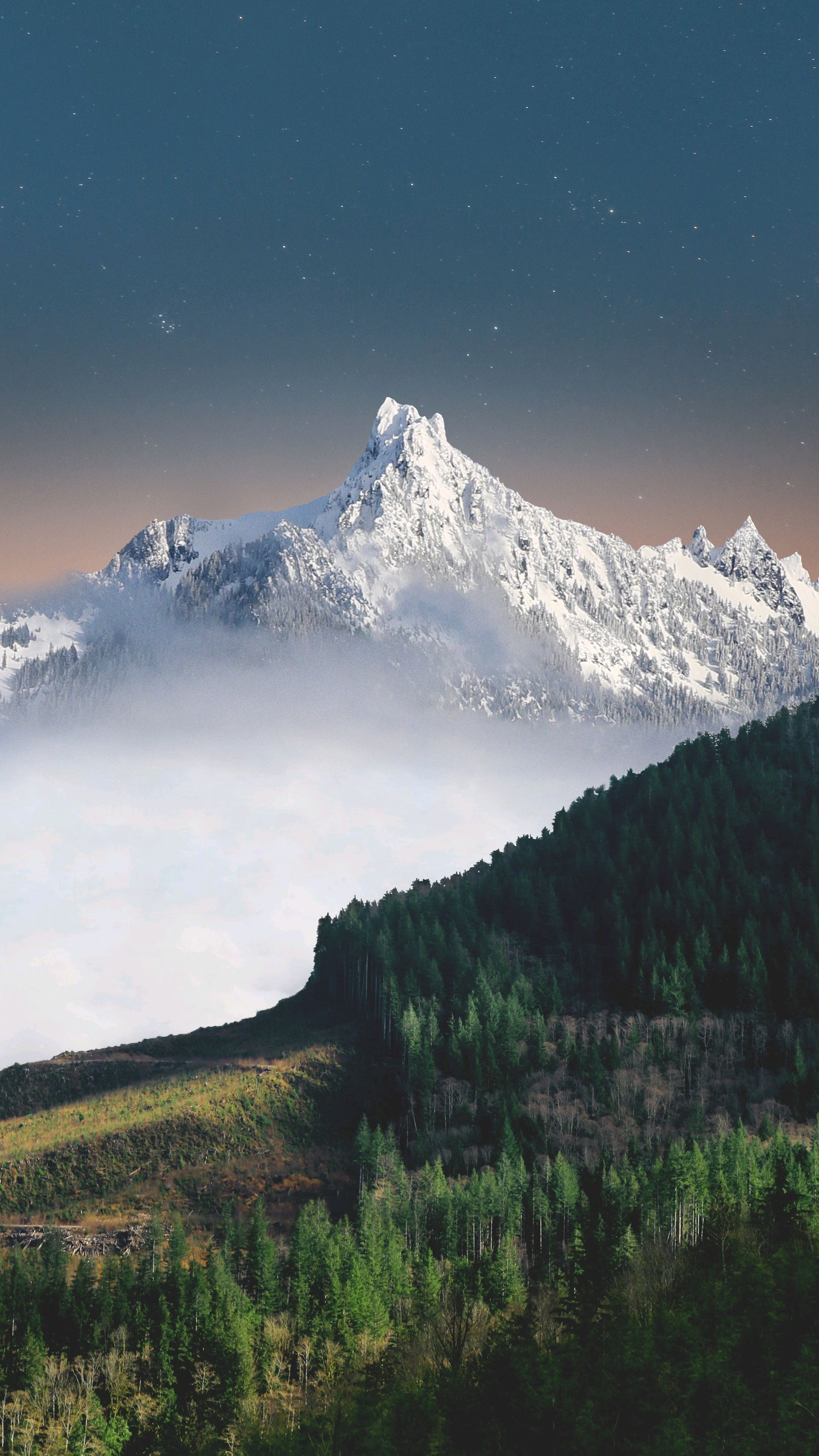 SnowMountains Green Forest Nature Scenery iPhone Wallpaper iphoneswallpapers com