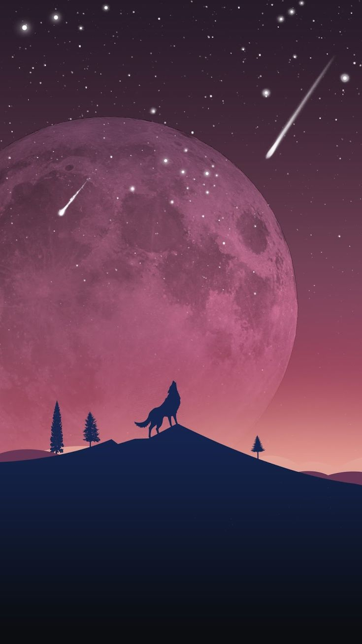 The Night Wolf Minimal iPhone Wallpaper iphoneswallpapers com