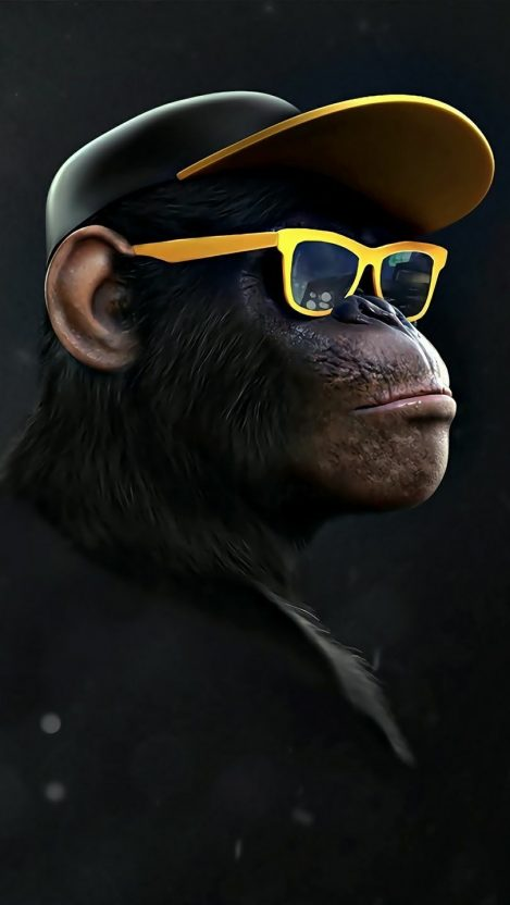 Black Monkey with Glasses iPhone Wallpaper