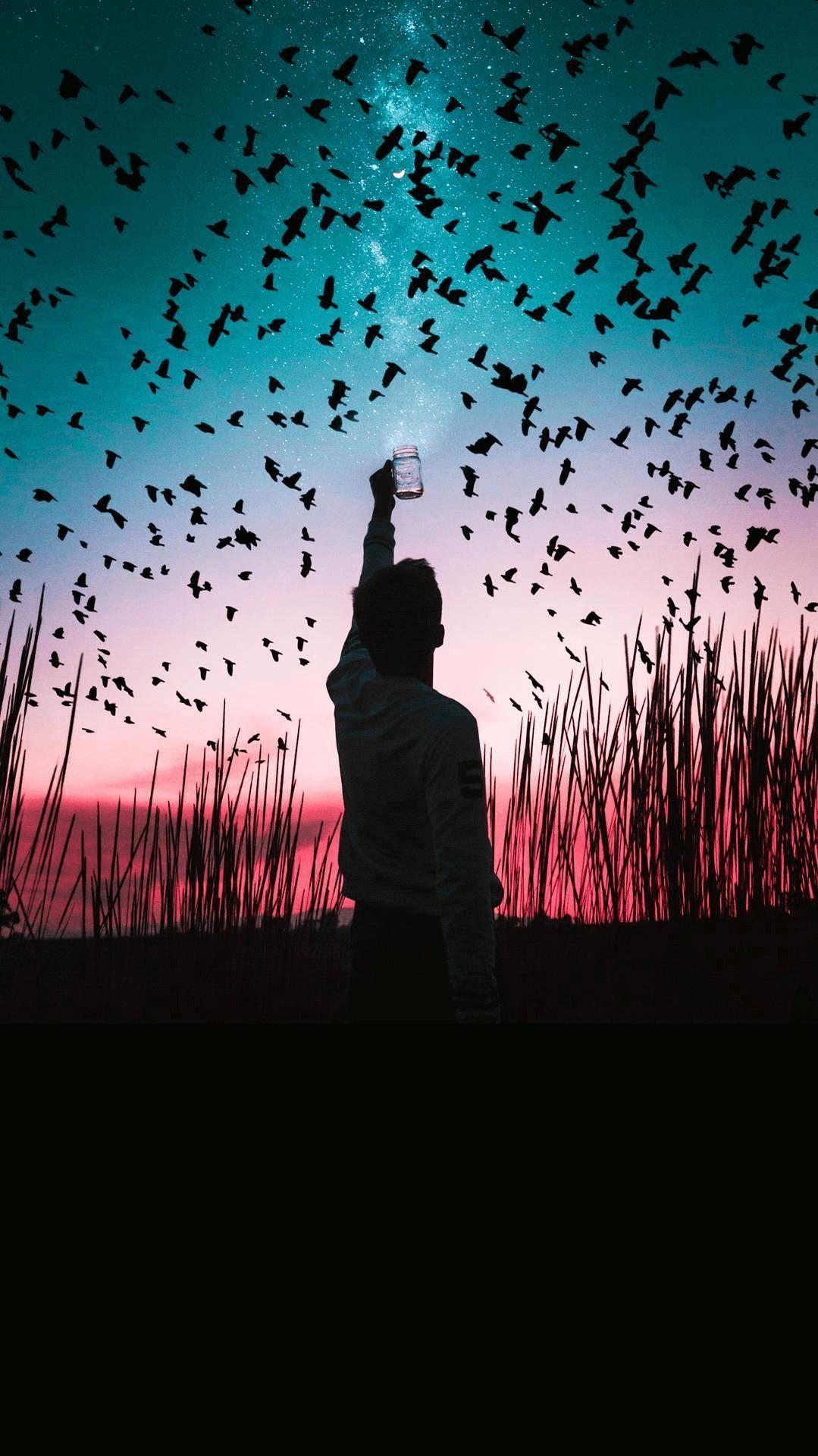 Man With Birds iPhone Wallpaper iphoneswallpapers com