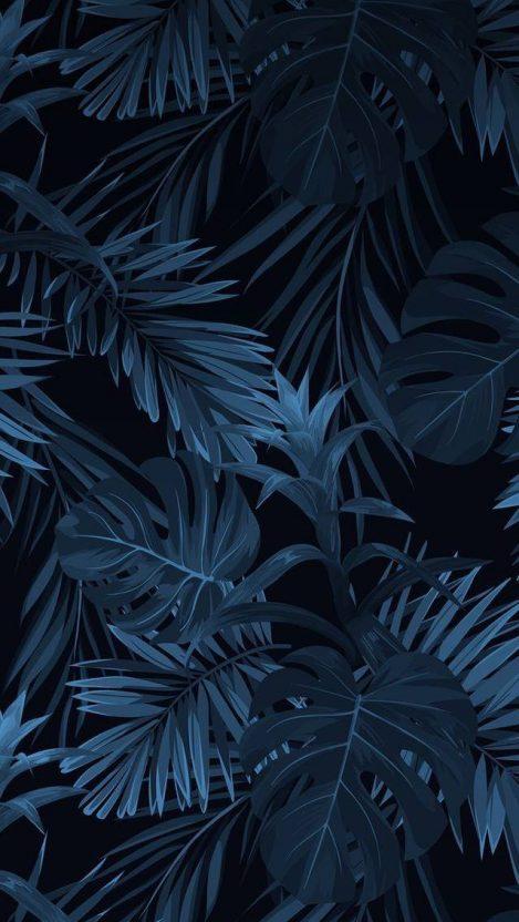 Dark Nature iPhone Wallpaper