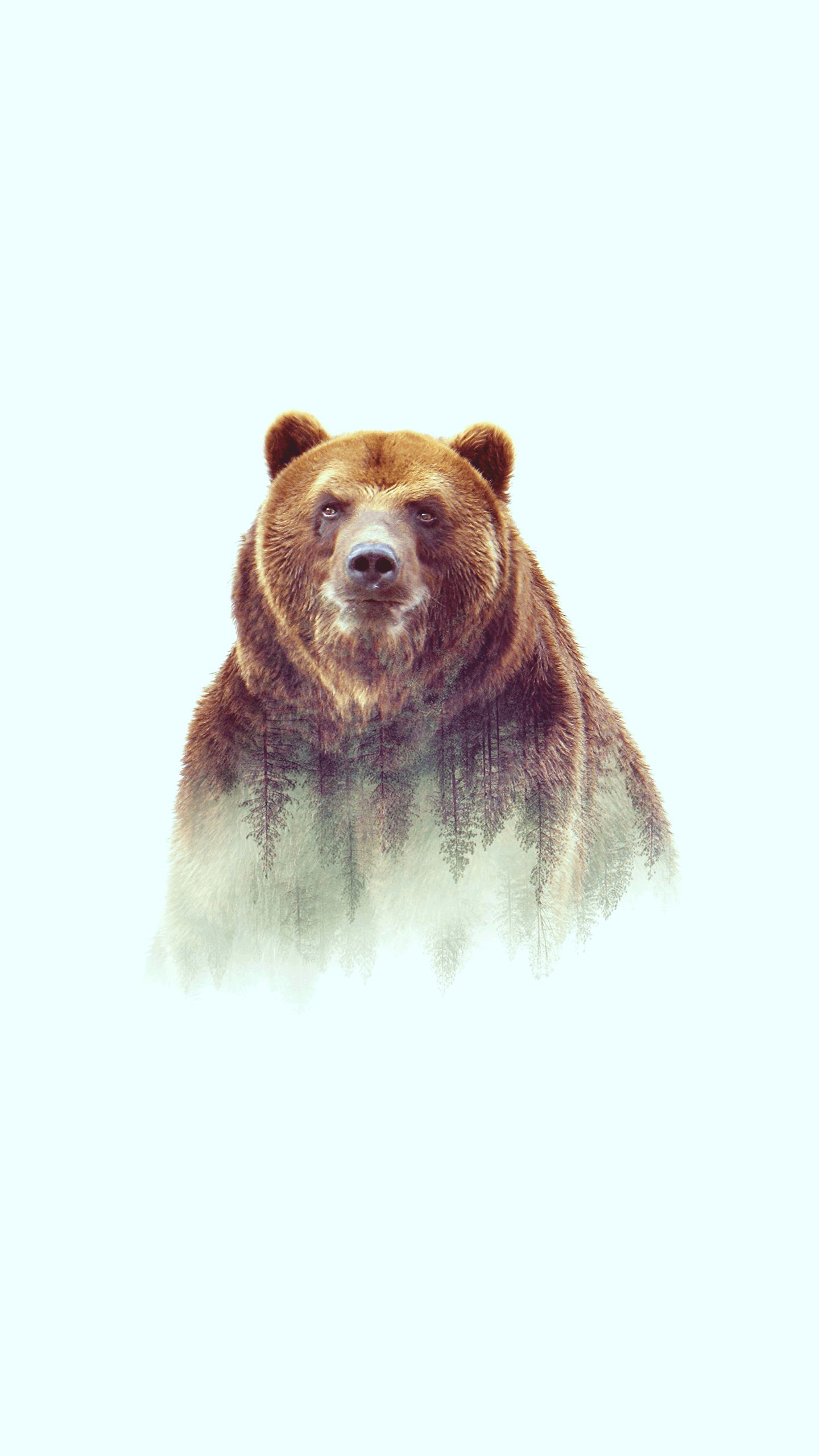 Grizzly bear Art iPhone Wallpaper