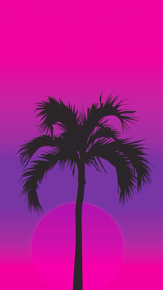 Palm Tree Sunset Simple iPhone Wallpaper