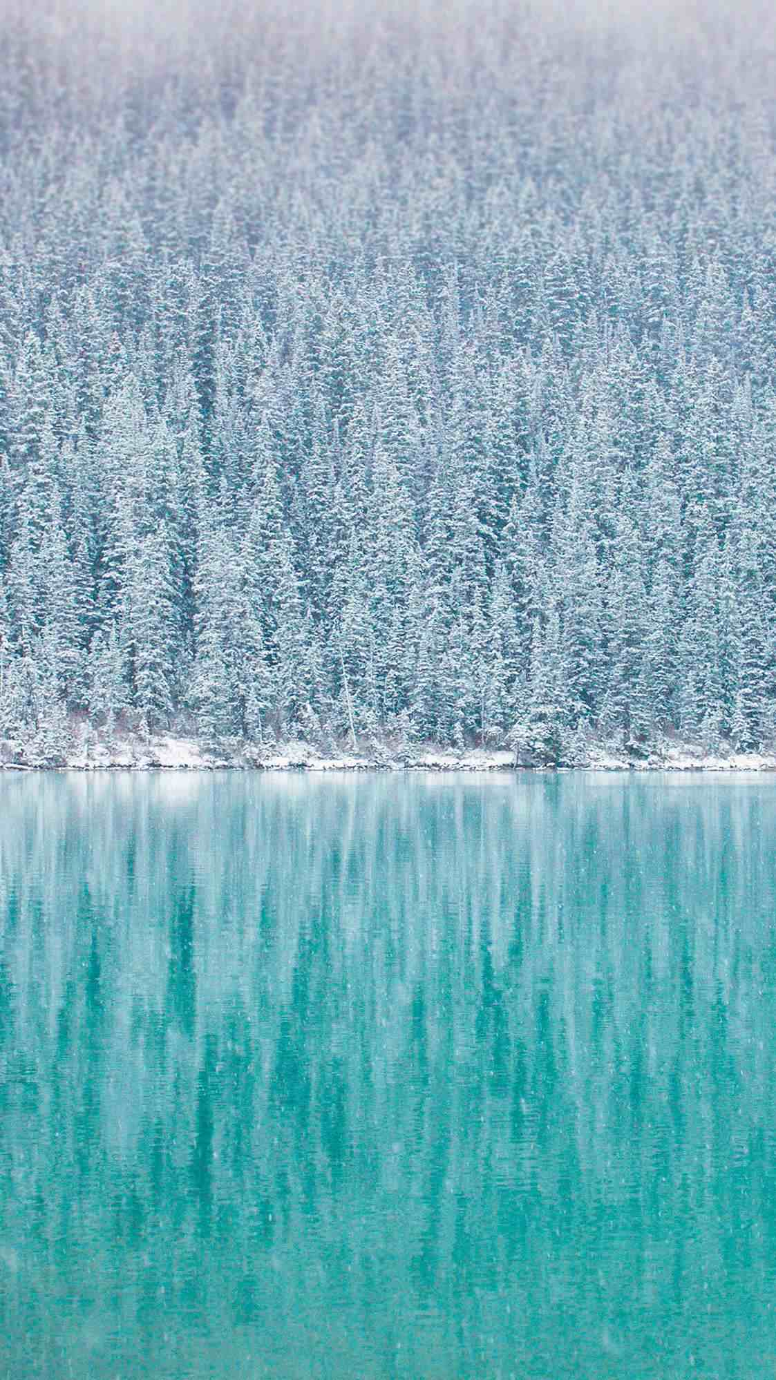 Snow Forest Blue Lake iPhone Wallpaper