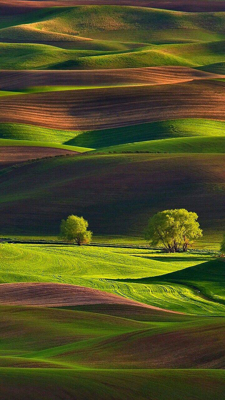 Tuscany Italy Grass Fields Nature iPhone Wallpaper