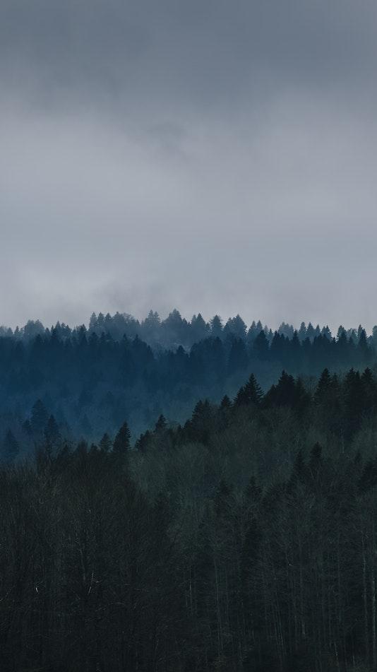 Goč Vrnjacka Banja Serbia Nature Forest iPhone Wallpaper