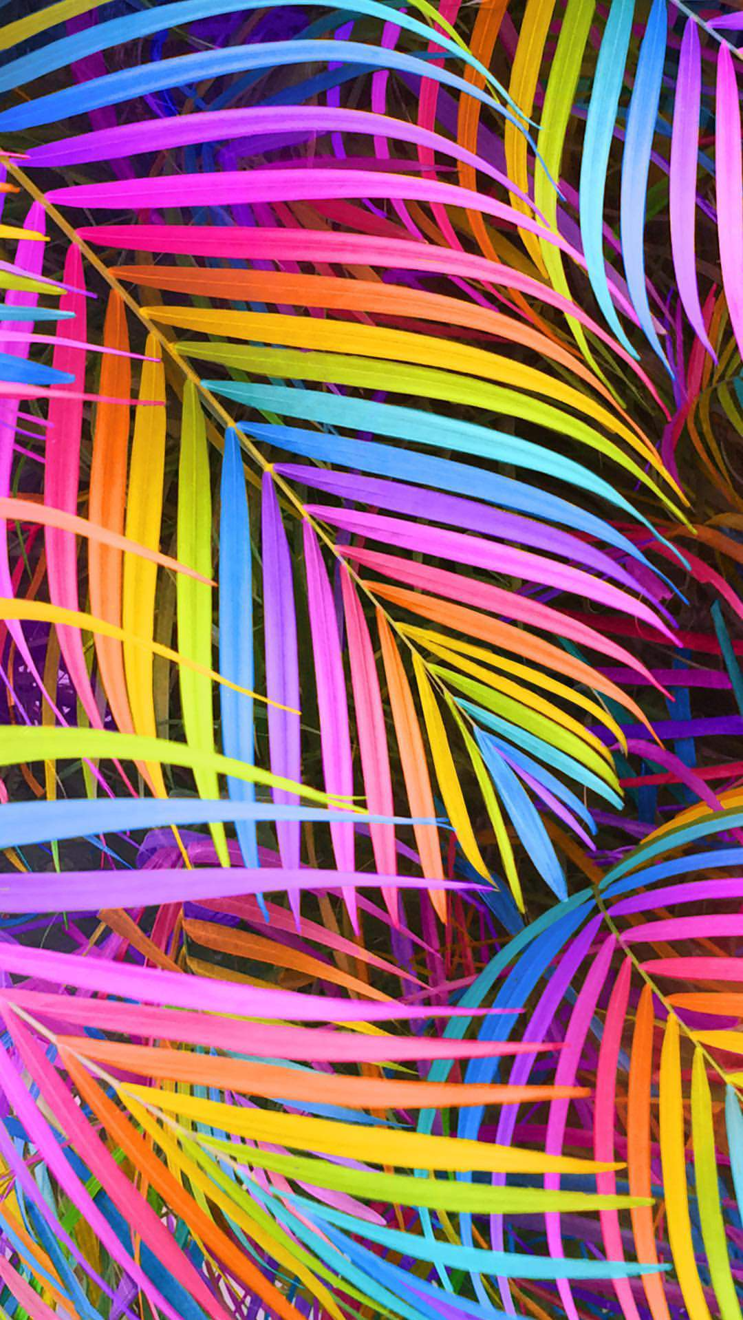 Colorful Tree Leaves iPhone Wallpaper