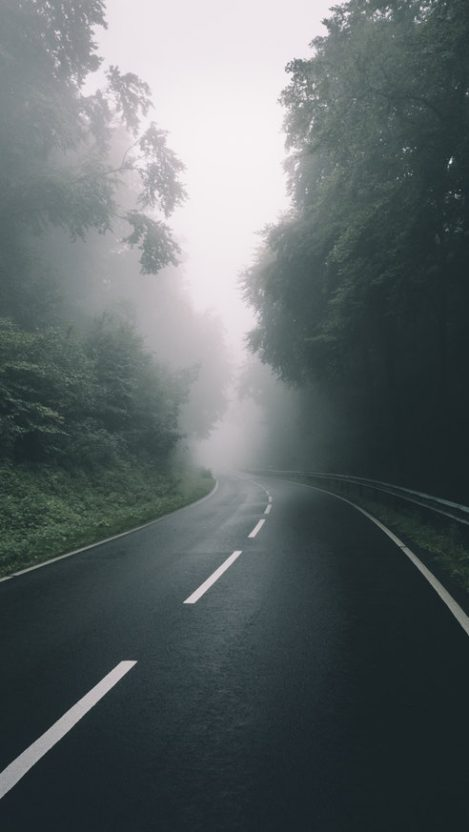Road To Nature Mist Morning iPhone Wallpaper