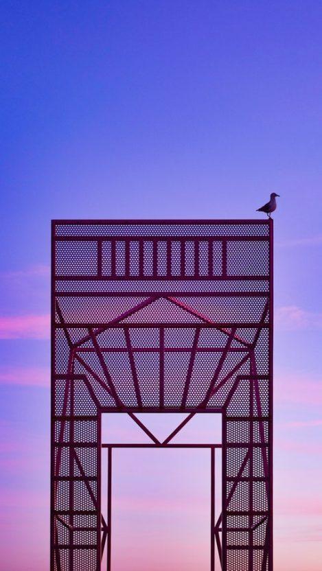 Seabird Sky Architecture iPhone Wallpaper