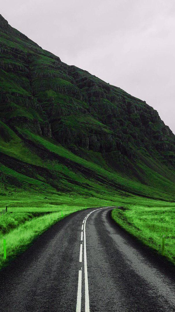 Green Nature Road iPhone Wallpaper