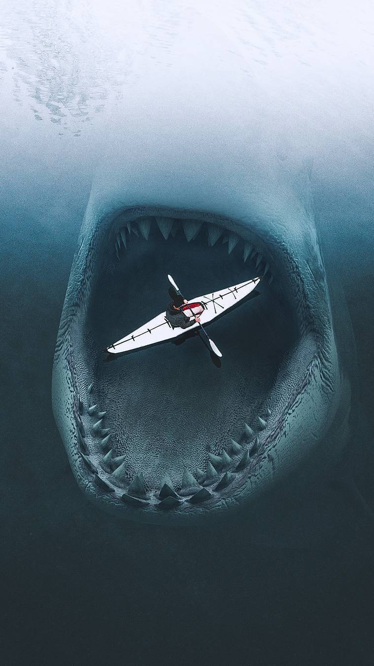 Megalodon Shark iPhone Wallpaper