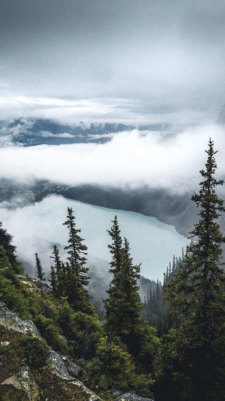 Mountain Lake Trees Mist Morning iPhone Wallpaper