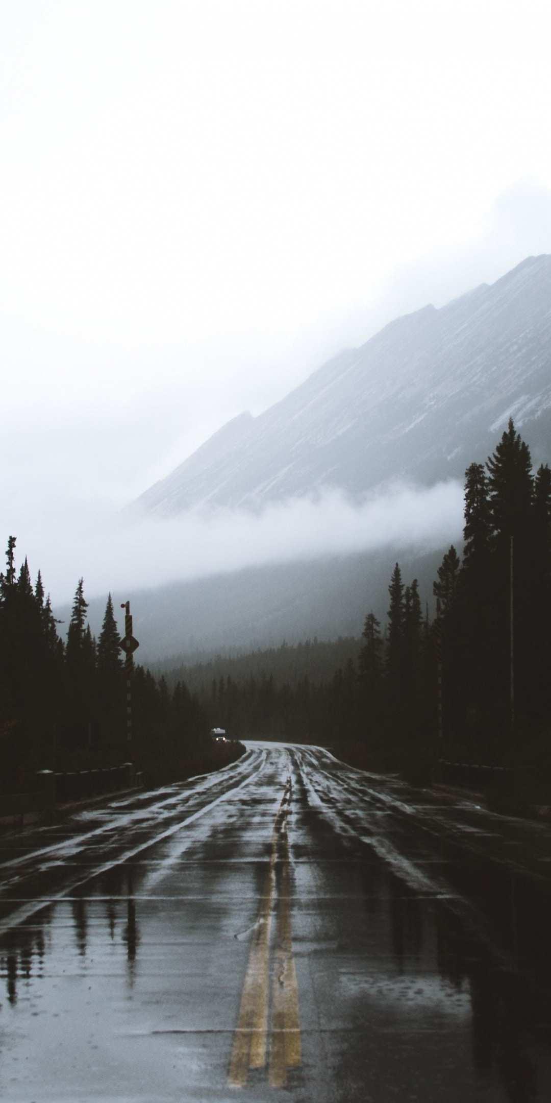Alberta Canada road rainy day iPhone Wallpaper