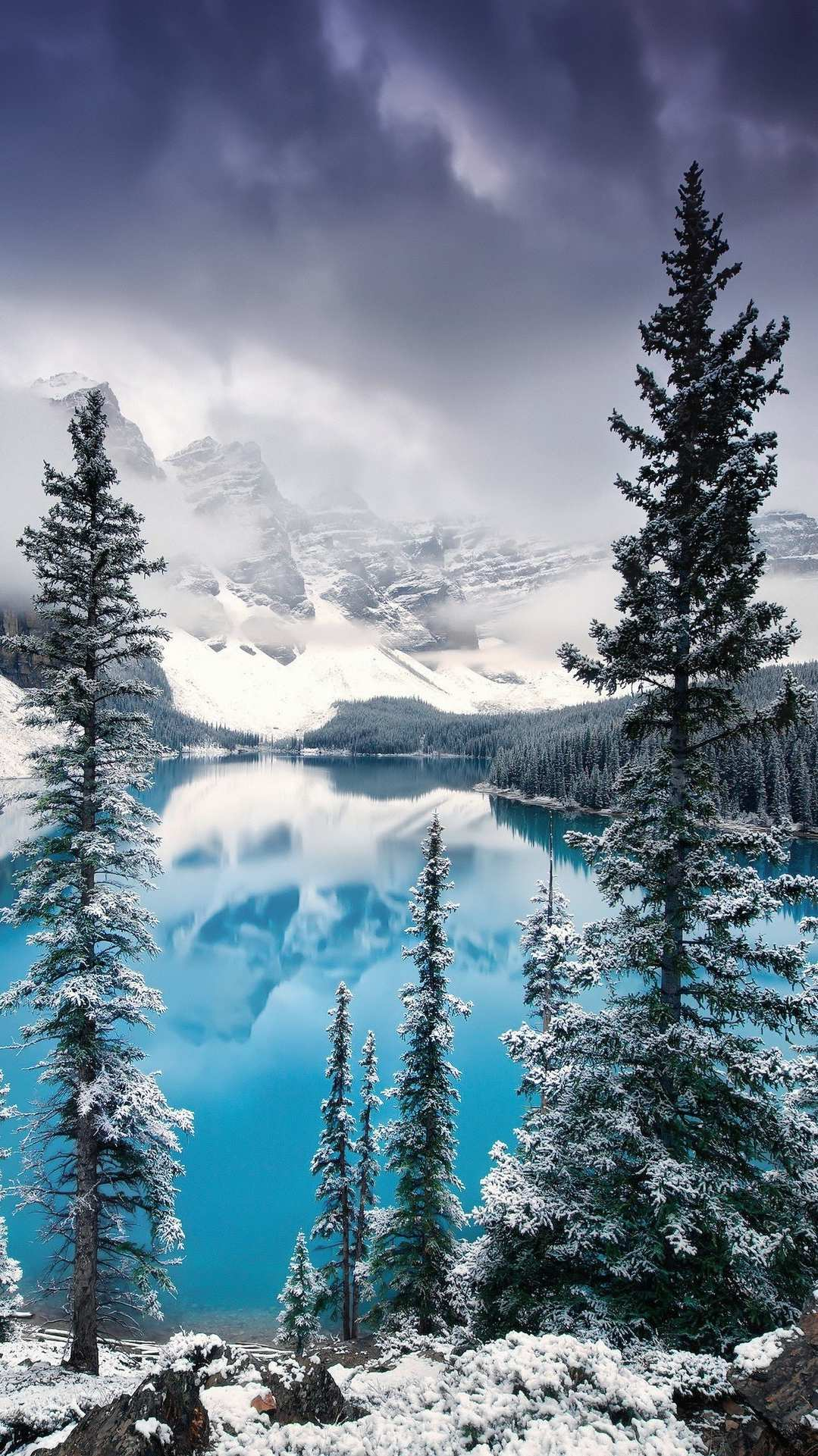 Mountains lake tree forest nature iPhone Wallpaper