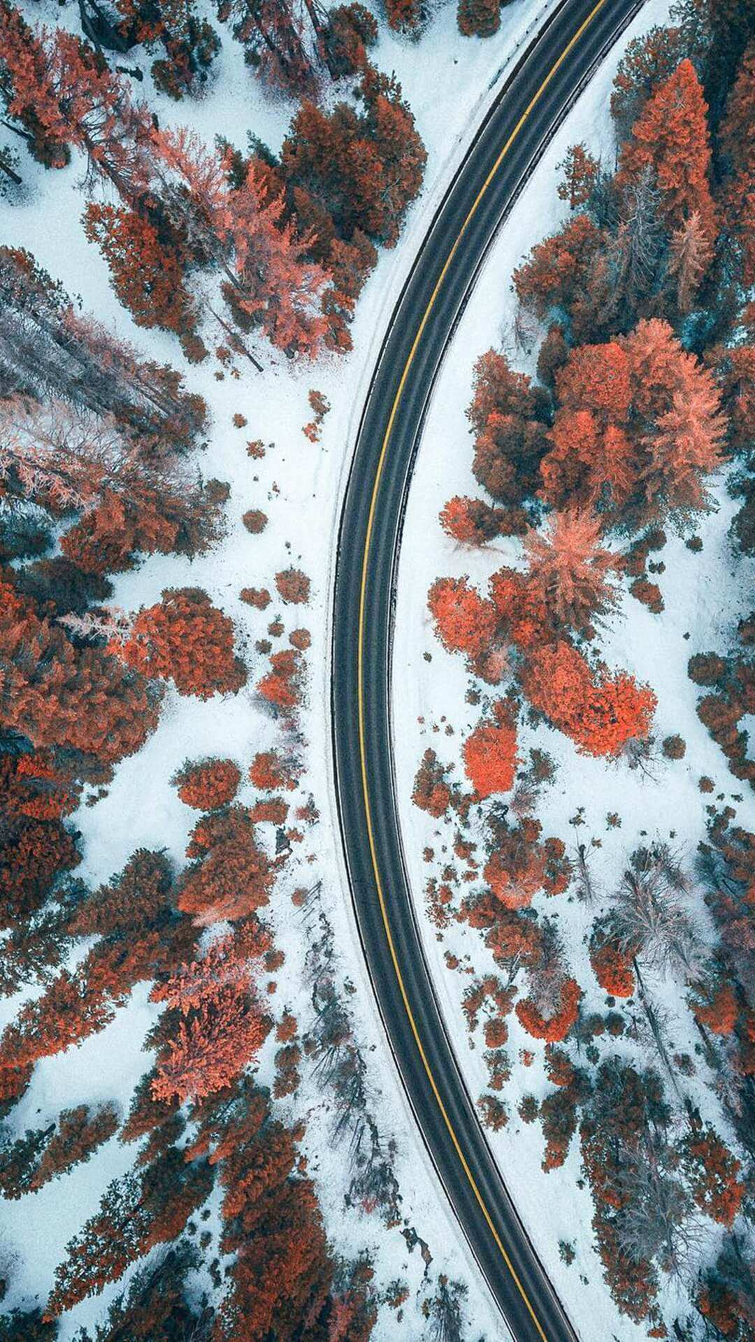 Road And Snow iPhone Wallpaper