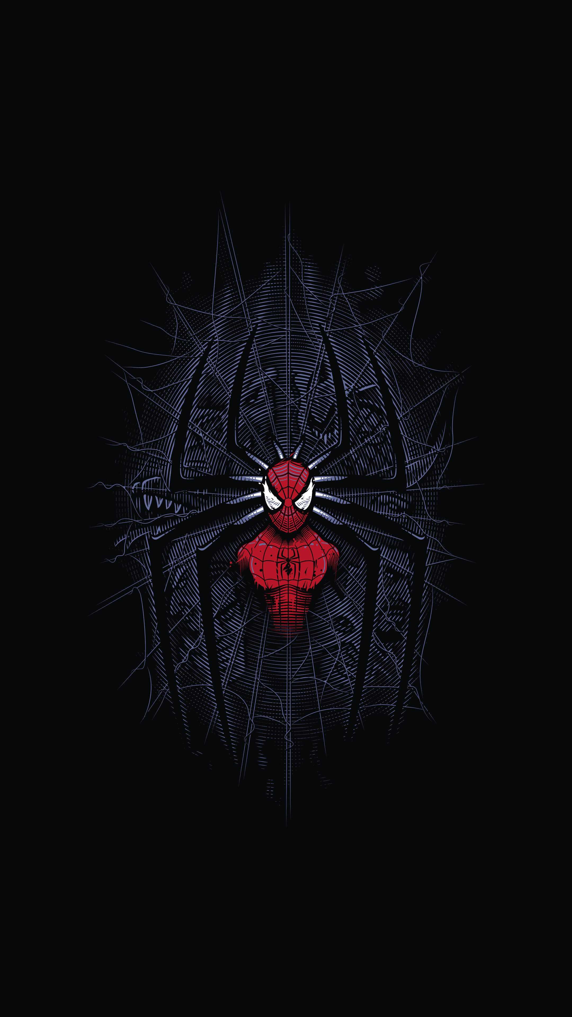 Spider man web iPhone Wallpaper