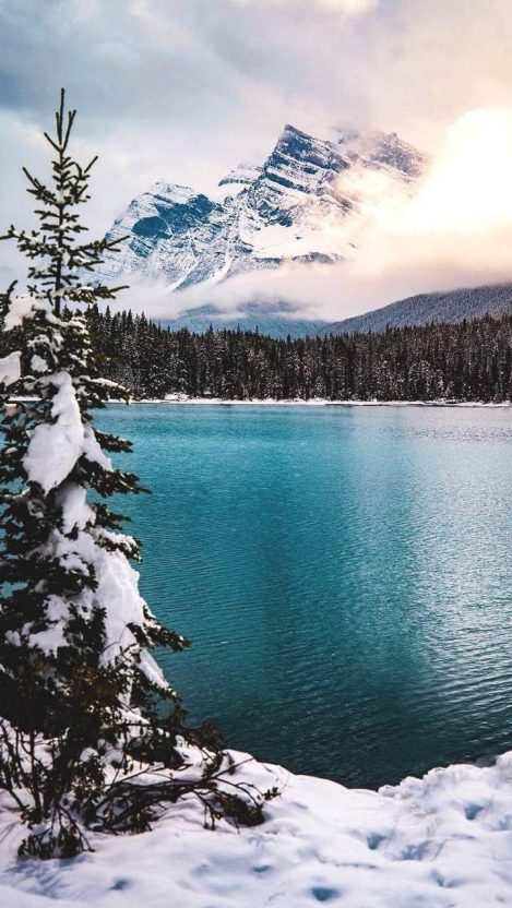 Blue Lake Winter Mountains Pine Trees iPhone Wallpaper